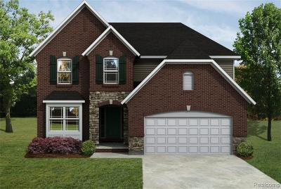 Macomb Single Family Home For Sale: 55096 Wolverine Dr