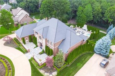 Northville Single Family Home For Sale: 47930 Ravello Crt