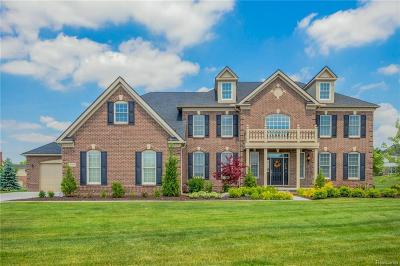 Northville Single Family Home For Sale: 50700 Briar Ridge Ln