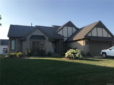Troy Single Family Home For Sale: 2869 Wagonwheel Dr