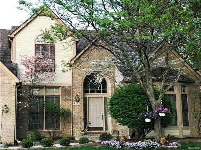 Troy Single Family Home For Sale: 4172 Vassar Dr