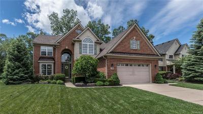 Belleville Single Family Home For Sale: 13114 Nautica Dr