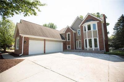 Lake Orion Single Family Home For Sale: 2970 Voorheis Lake Crt