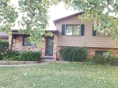 Clinton Township Single Family Home For Sale: 33851 Floyd St