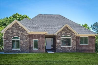 Lake Orion Single Family Home For Sale: 353 Valley View Crt