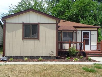 Madison Heights Single Family Home For Sale: 29075 Edward Ave