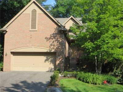 West Bloomfield Condo/Townhouse For Sale: 6680 Heron Pnt