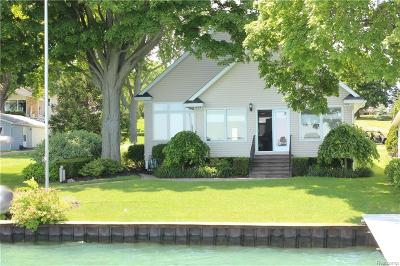 St. Clair Single Family Home For Sale: 1086 N Riverside Ave
