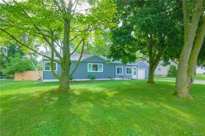 Lake Orion Single Family Home For Sale: 245 Perry Street St