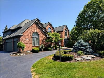 Rochester Hills Single Family Home For Sale: 2532 Cedar Brook Crt