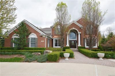 Rochester Single Family Home For Sale: 5769 Stonehaven Blvd