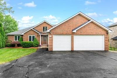 Troy Single Family Home For Sale: 4179 Crooks Rd