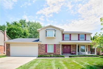 Rochester Hills Single Family Home For Sale: 356 Shellbourne Dr