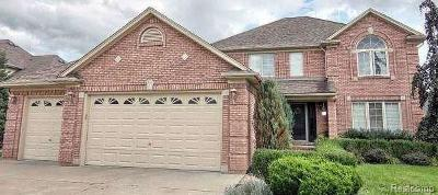 Macomb MI Single Family Home For Sale: $340,000