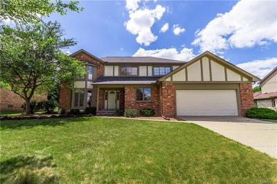 Rochester Hills Single Family Home For Sale: 1369 Lomas Verdes