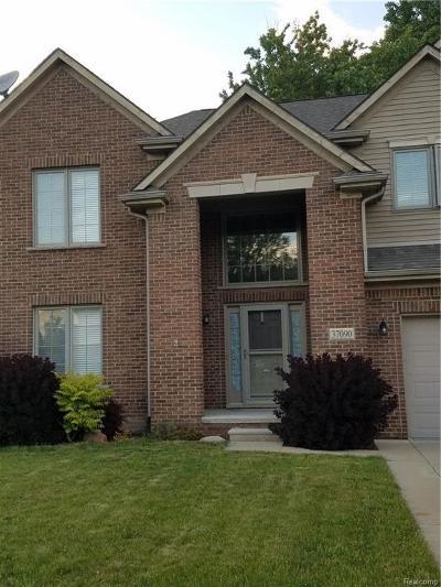 Westland Single Family Home For Sale: 37090 Vista Dr