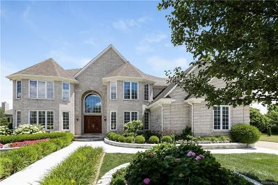 Sterling Heights MI Single Family Home For Sale: $599,000