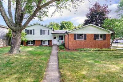 Sterling Heights Single Family Home For Sale: 8851 Dill Dr