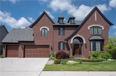 Shelby Twp Single Family Home For Sale: 53986 Lawson Creek Dr