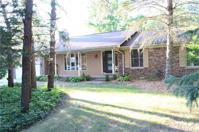 Shelby Twp Single Family Home For Sale: 3737 24 Mile Rd