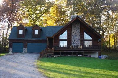 Lapeer Single Family Home For Sale: 3845 Lake Lapeer Drive