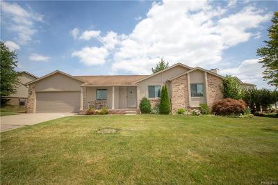 Rochester Hills Single Family Home For Sale: 101 Foxboro Dr