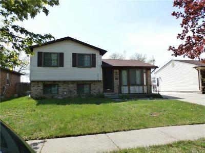 Royal Oak Single Family Home For Sale: 4407 Briarwood Ave