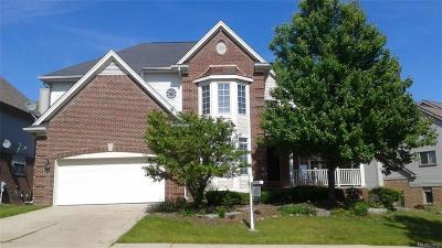Rochester Single Family Home For Sale: 1215 Putnam Cir