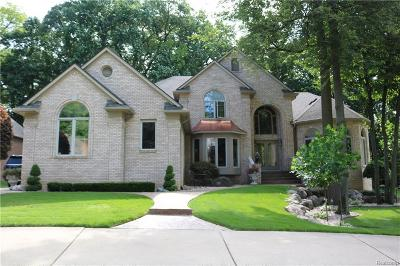 Shelby Twp Single Family Home For Sale: 56246 Parkview Dr