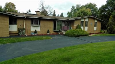Clinton Township Single Family Home For Sale: 37863 W Horseshoe Dr