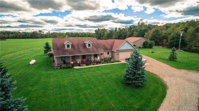 Lapeer Single Family Home For Sale: 2278 Millington Rd