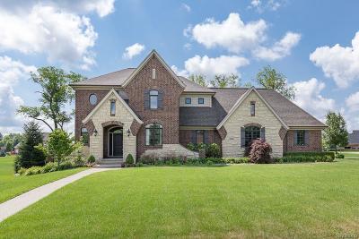 Macomb Single Family Home For Sale: 5750 Bradbury Run
