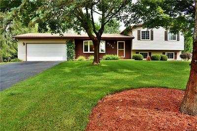 Clarkston Single Family Home For Sale: 8770 Waumegah Rd