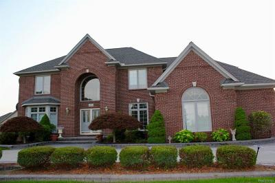 Shelby Twp Single Family Home For Sale: 49501 Sandra Dr