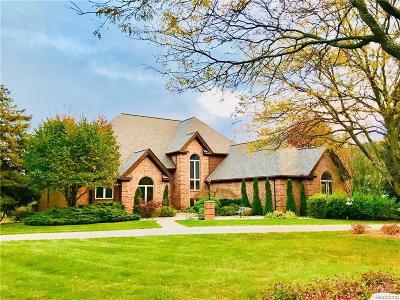 Lapeer Single Family Home For Sale: 1401 Cedar Dr