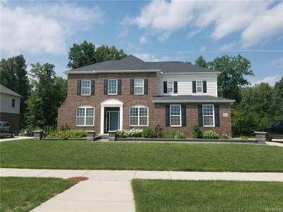 New Baltimore Single Family Home For Sale: 27215 Superior
