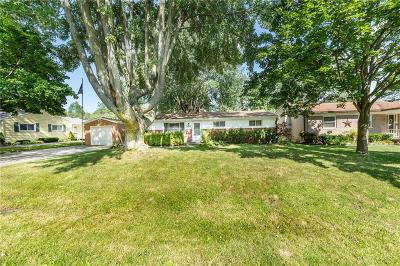 Plymouth Single Family Home For Sale: 9048 Brookline Ave
