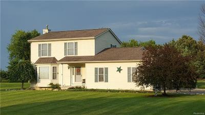 Lapeer Single Family Home For Sale: 336 N Doran Rd