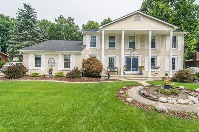 Shelby Twp Single Family Home For Sale: 46122 Houghton Dr