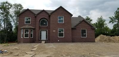 Canton Single Family Home For Sale: 47463 Ellery Ln
