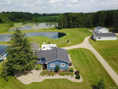 Lapeer Single Family Home For Sale: 874 Mitchell Lake Rd