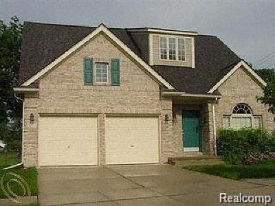 Pontiac Single Family Home For Sale: 651 Brady Ln