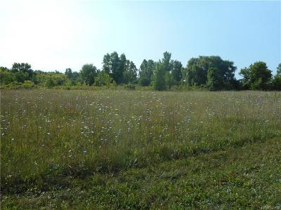 Residential Lots & Land For Sale: 48936 Gratiot Ave