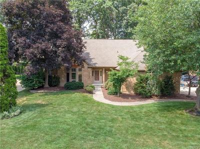 Shelby Twp Single Family Home For Sale: 53778 Oakview Dr