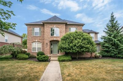 Canton Single Family Home For Sale: 49566 Courtyard Ln