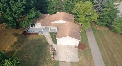 Rochester Hills Single Family Home For Sale: 3728 Nearing Rd