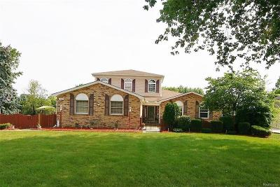 Sterling Heights Single Family Home For Sale: 14623 Clinton River Rd