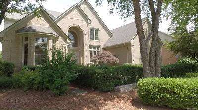 Rochester Hills Single Family Home For Sale: 3862 Teakwood Ln