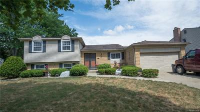 Livonia Single Family Home For Sale: 17460 Park St