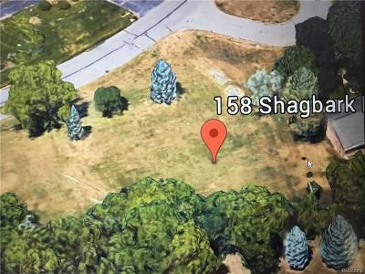 Residential Lots & Land For Sale: 158 Shagbark Dr